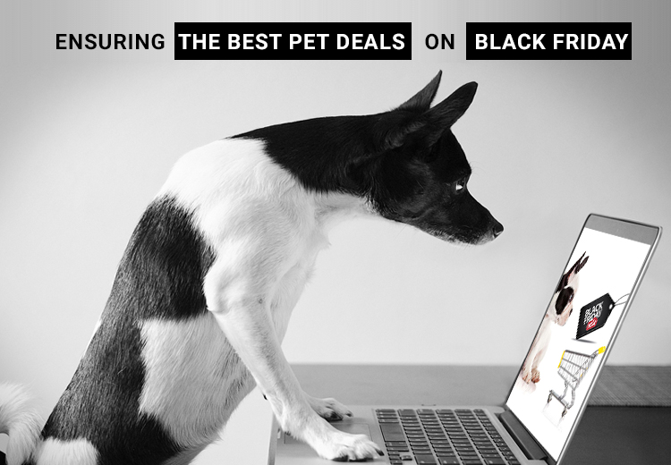 Best-Pet-Deals-on-Black-friday