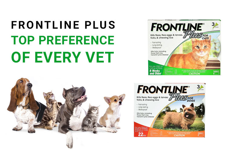 Buy Frontline plus